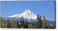 Mount Hood Mountain Oregon Acrylic Print by Jennie Marie Schell