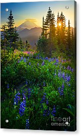 Mount Rainier Sunburst Acrylic Print by Inge Johnsson
