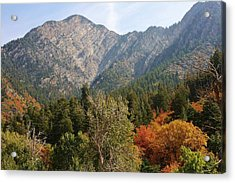 Mountain Escape Acrylic Print by Bruce Bley