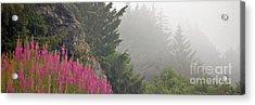 Mountain Fog Acrylic Print by Chuck Flewelling