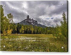 Mountain In The Meadow Acrylic Print by Jon Glaser