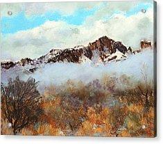 Mountain Mist Acrylic Print by M Diane Bonaparte