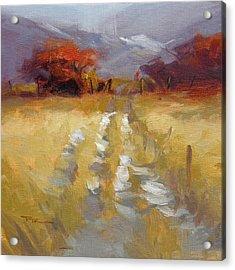 Mountain Path Acrylic Print by Richard Robinson