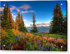 Mountain Rainier  Sunset Acrylic Print by Emmanuel Panagiotakis