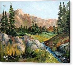 Mountain Stream Acrylic Print by Dorothy Maier