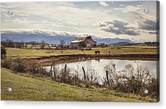 Mountain View Barn Acrylic Print by Heather Applegate