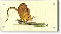 Mouse Acrylic Print by Juan  Bosco