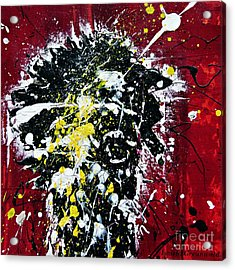Mr. Nobody Acrylic Print by Ismeta Gruenwald