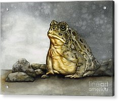 Mr. Woodhouse Toad Acrylic Print by Nan Wright