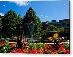 Msu Water Fountain Acrylic Print by John McGraw