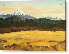 Mt. Bachelor Acrylic Print by Donna Drake