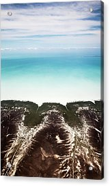 Mudflats Acrylic Print by Paul Williams