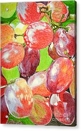Multi Coloured Grapes Acrylic Print by Yvonne Johnstone