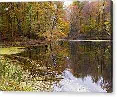 Munroe Falls  Acrylic Print by Tim Fitzwater
