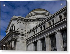 Museum Of Natural History Acrylic Print by Andrew Pacheco