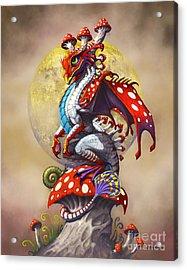 Mushroom Dragon Acrylic Print by Stanley Morrison