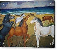 Mustang Mates Acrylic Print by Prasenjit Dhar