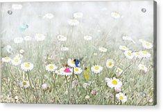 My Fairies Acrylic Print by Kume Bryant