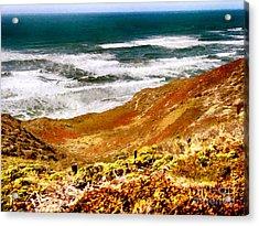 My Impression Of California Coastline Acrylic Print by Bob and Nadine Johnston