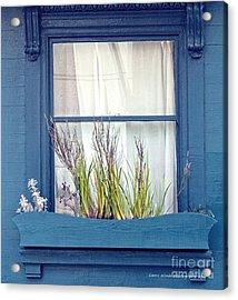 My San Francisco Window Garden Acrylic Print by Artist and Photographer Laura Wrede