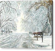 My Slippery Street  Acrylic Print by Carol Wisniewski