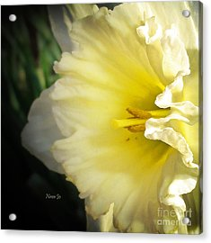 My Spring Love Acrylic Print by Nava Thompson