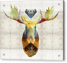 Mystic Moose Art By Sharon Cummings Acrylic Print by Sharon Cummings