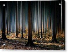 Mystic Wood Acrylic Print by Carsten Meyerdierks