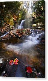Mystical Pool Acrylic Print by Debra and Dave Vanderlaan