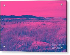 Mystical Red Acrylic Print by Mickey Harkins