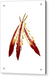 Native American Feathers  Acrylic Print by Michael Vigliotti