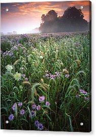 Native Prairie Sunrise Acrylic Print by Ray Mathis