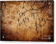 Nature Canvas  Acrylic Print by Andrea Kollo