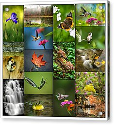 Nature's Finest Acrylic Print by Christina Rollo