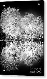 Natures Mirror Acrylic Print by John Rizzuto