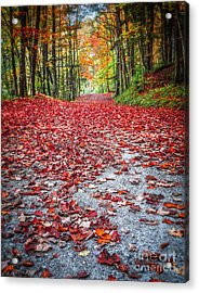 Nature's Red Carpet Acrylic Print by Edward Fielding