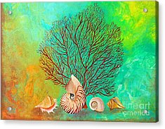 Nautilus And Coral Reef Acrylic Print by Gabriela Valencia