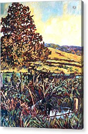 Near Childress Acrylic Print by Kendall Kessler