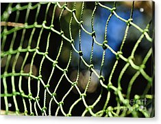 Netting - Abstract Acrylic Print by Kaye Menner