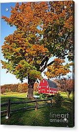 New England Farm Fall Foliage Acrylic Print by Edward Fielding