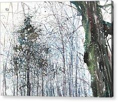 New England Landscape No.224 Acrylic Print by Sumiyo Toribe