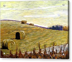 New Haybales Acrylic Print by Charlie Spear