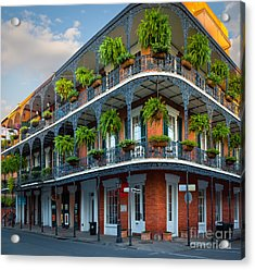 New Orleans House Acrylic Print by Inge Johnsson