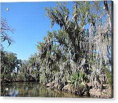 New Orleans - Swamp Boat Ride - 1212135 Acrylic Print by DC Photographer
