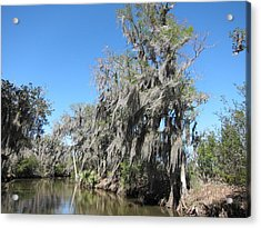 New Orleans - Swamp Boat Ride - 1212139 Acrylic Print by DC Photographer