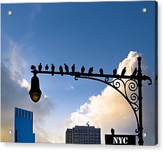 New York City Is For The Birds Acrylic Print by Mark E Tisdale