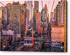 New York City - Skycrapers And The Roosevelt Island Tram Acrylic Print by Vivienne Gucwa