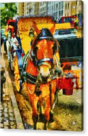 New York Horse And Carriage Acrylic Print by Dan Sproul