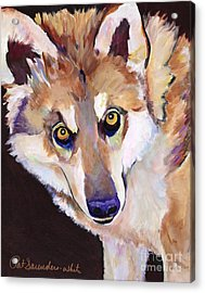 Night Eyes Acrylic Print by Pat Saunders-White