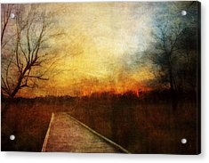 Night Falls Acrylic Print by Scott Norris